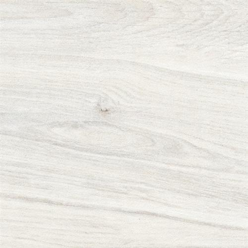 Woodville Bianco