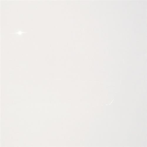 Neutra Super White in Super White   24x24 - Tile by Tesoro