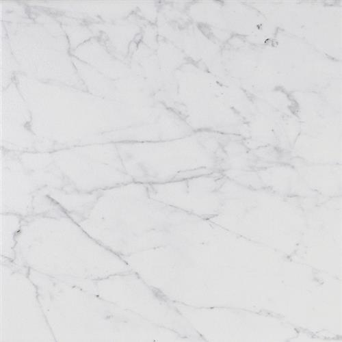 Tesoro Coliseum Carrara X Ceramic Porcelain Tile Franklin - Carrara porcelain tile 3x6