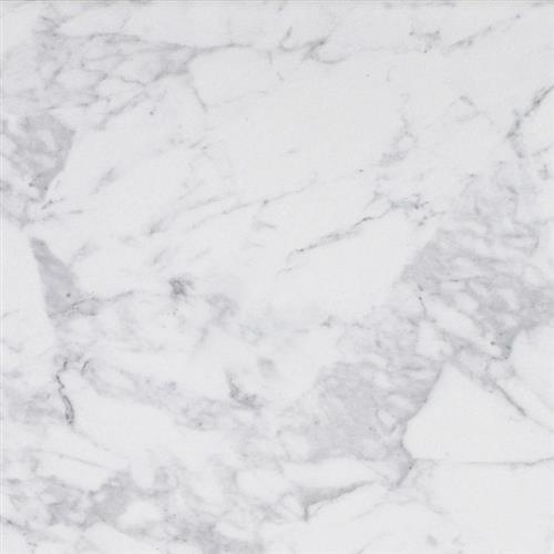 Coliseum Carrara Glossy Wall Tile
