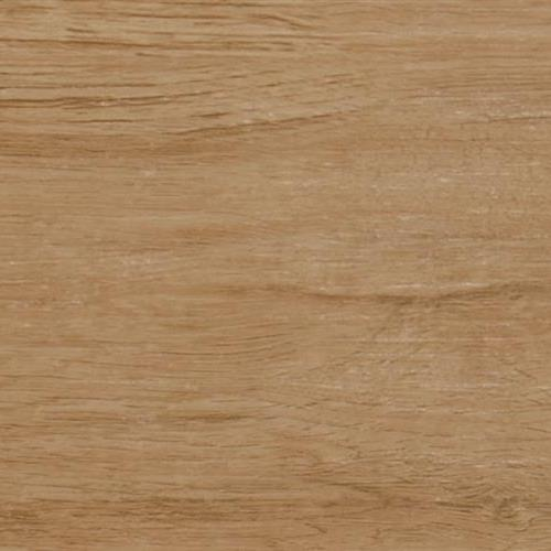 TIMBERLINE Maple
