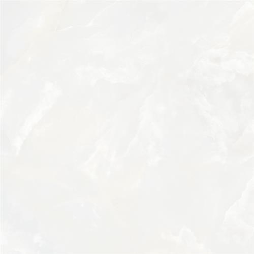 Madras in Bianco  32x32 Matte - Tile by Tesoro
