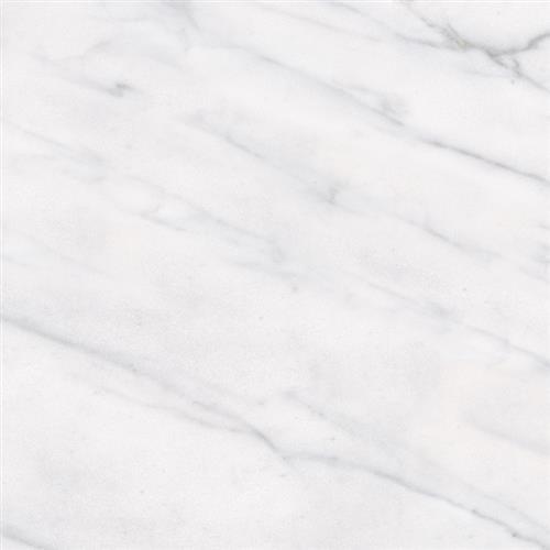 Classic Carrara 12X12