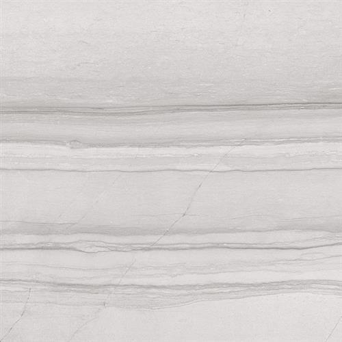 Antica Grey - 12X24