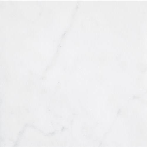 Bianco Neve Polished 18X18