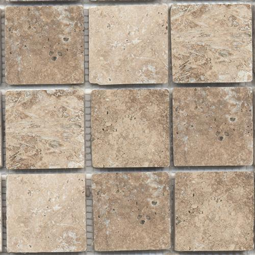 Tesoro Noce Noce Natural Stone - Orlando, Florida - All