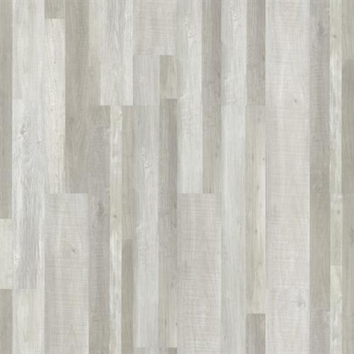 Luxwood Silver Birch