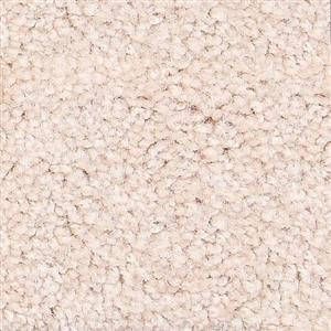 Carpet ShantyCreek SHNJBUR Burlwood