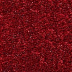 Carpet ShantyCreek SHNJDAR DarkRuby