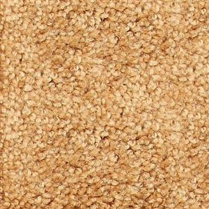 Carpet ShantyCreek SHNJGOM GoldMine