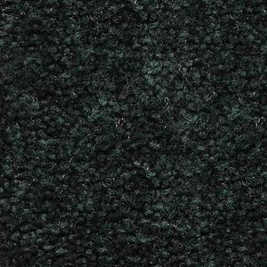 Carpet ShantyCreek SHNJNIG NightForest