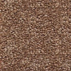 Carpet ShantyCreek SHNJSEB SealBrown