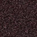 Carpet Church Hill Hot Coffee  thumbnail #1