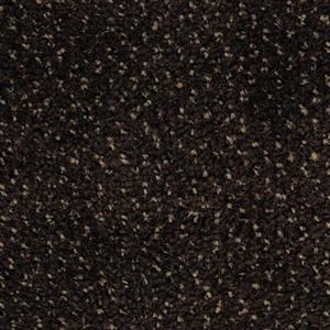Carpet Ancestry AYTJPRO Progression