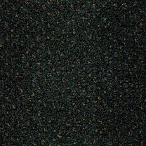 Carpet Ancestry Transfer   main image