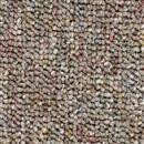 Carpet Auburn Sand Dune  thumbnail #1