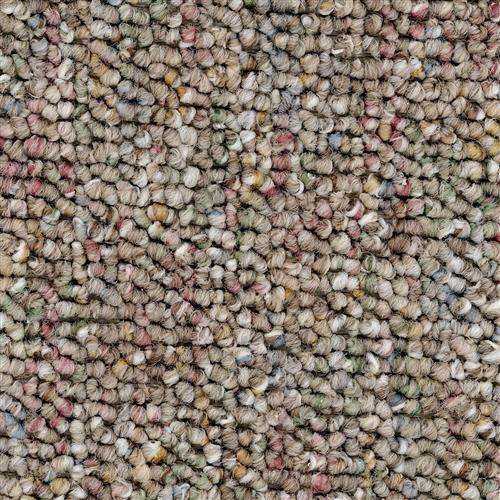 Carpet Auburn Taupe   main image