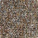 Carpet Auburn Teddy Bear  thumbnail #1