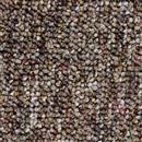 Carpet Auburn Toffee   thumbnail #1