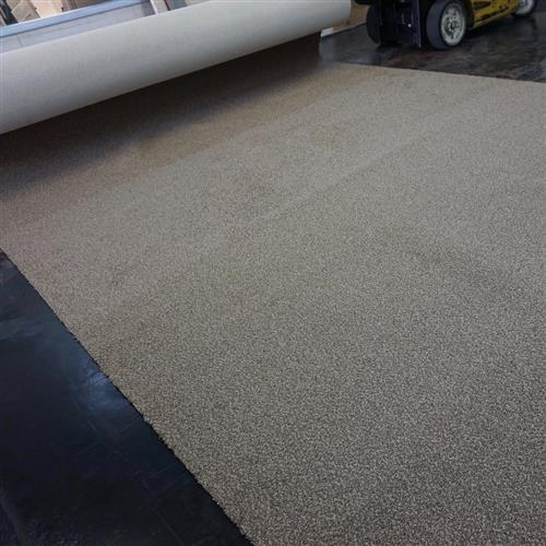 Carpet Free Install Specials Special - 2  main image