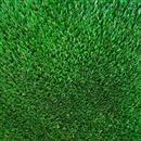 Carpet Super Grass Grass  thumbnail #1