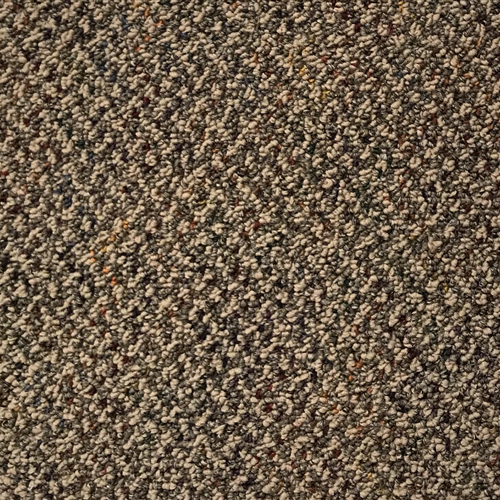 Carpet Commercial Carpet - In Stock Camel  main image