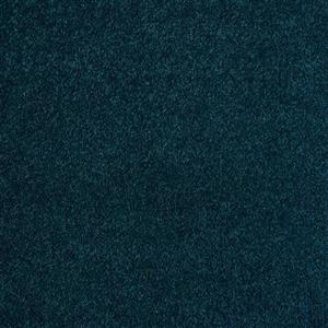 Carpet EventCarpet-InStock Event-Polo Polo