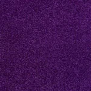 Carpet EventCarpet-InStock Event-Purple Purple