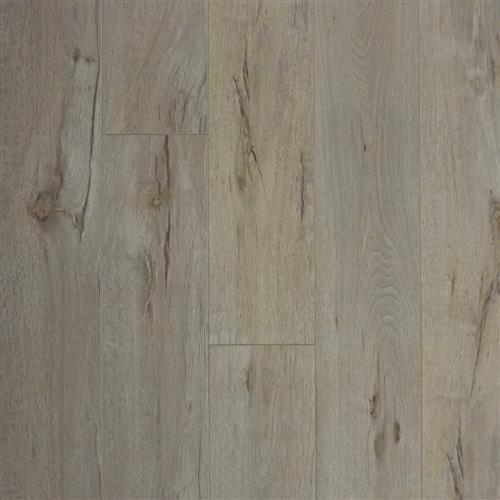 Laminate Laminate - In Stock Race - Sea Bottom  main image