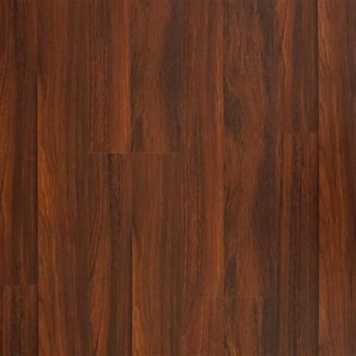 Laminate Laminate - In Stock Rainforest - Cherry  main image