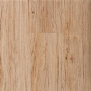 Laminate ClMidnightForest12mm16221 CLXT1203-GH GoldHckry