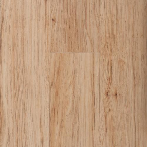 Laminate Cl Midnight Forest 12mm 16.221 Gold Hckry  main image