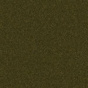 Carpet BOUNTIFUL 2919M BurningCash
