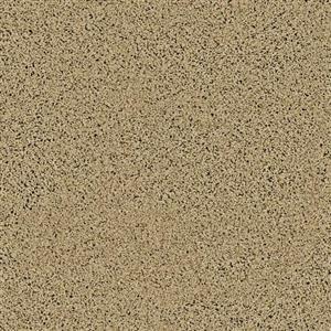 Carpet EXPRESSIVE 2924M Bare