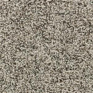 Carpet Aria 2420 DownySoft