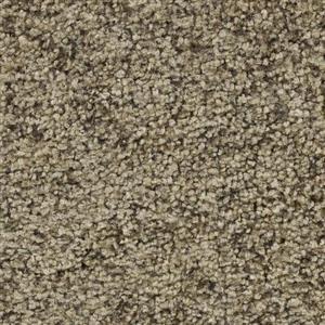 Carpet Aria 2420 FiresideChat