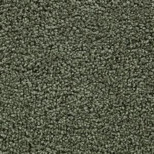 Carpet BELOVED 3110 SecretGarden