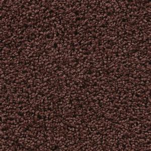 Carpet BELOVED 3110 ArabianSpice