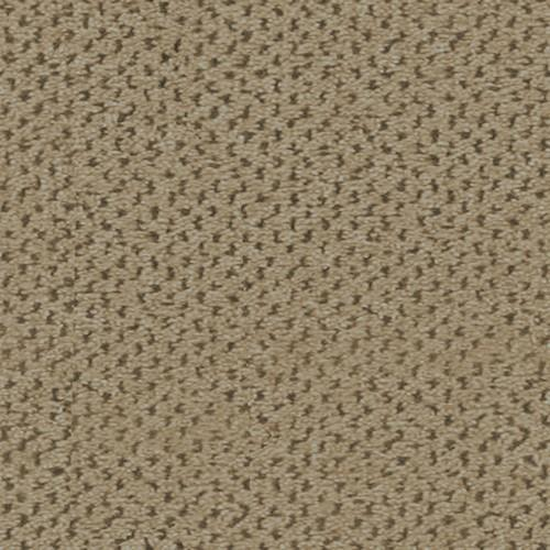 Pointe Royale Ii Taupe 6444