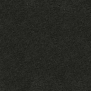 Carpet VERANDA 2954 Shade