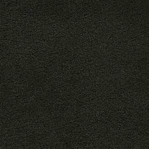 Carpet VERANDA 2954 HangingFern