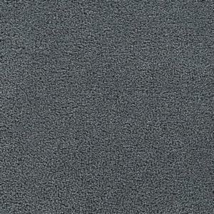 Carpet VERANDA 2954 FreshAir