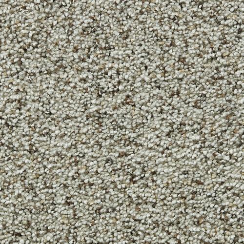 Coastal Living Bleached Linen 1