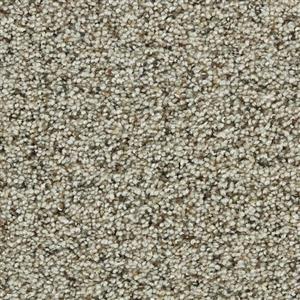 Carpet COASTALLIVING 3073 Hammock