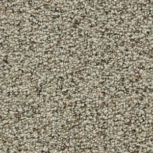Carpet COASTALLIVING 3073 Beachcomber