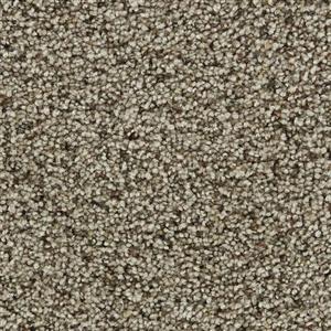 Carpet COASTALLIVING 3073 Coir