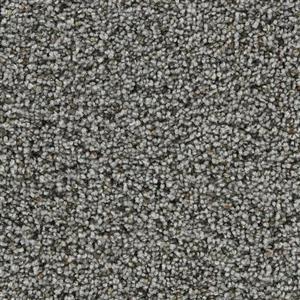 Carpet COASTALLIVING 3073 Driftwood