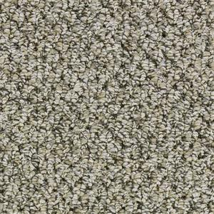 Carpet ANTHEM 3018 Sports