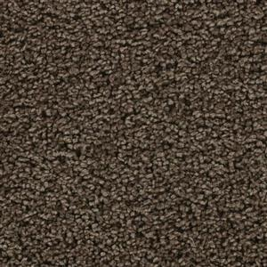 Carpet Devoted 3108 16