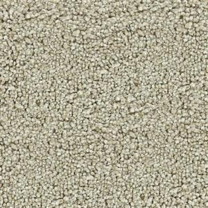 Carpet CHARISMATIC 2549 Radiance